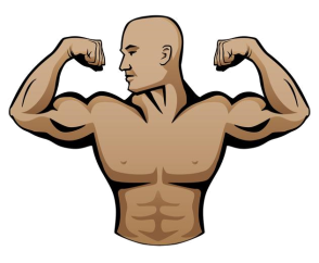 male-body-builder-logo-vector-illustration.jpg