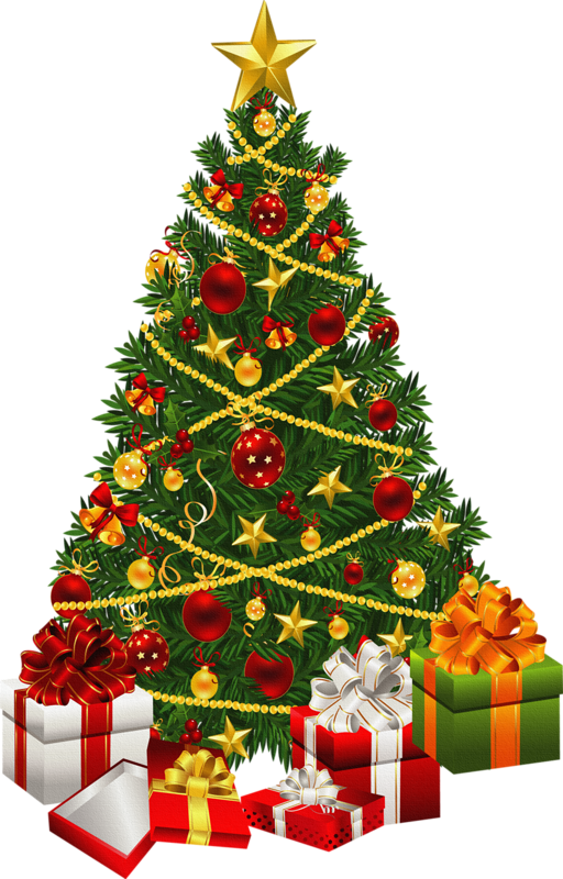 fir_tree_PNG2470.png
