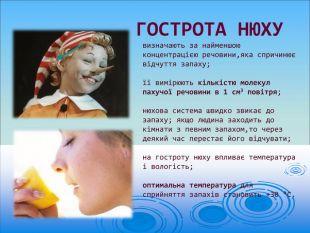 Органи дотику. Органи нюху та смаку. Для чого вони потрібні людині ... | 233x310