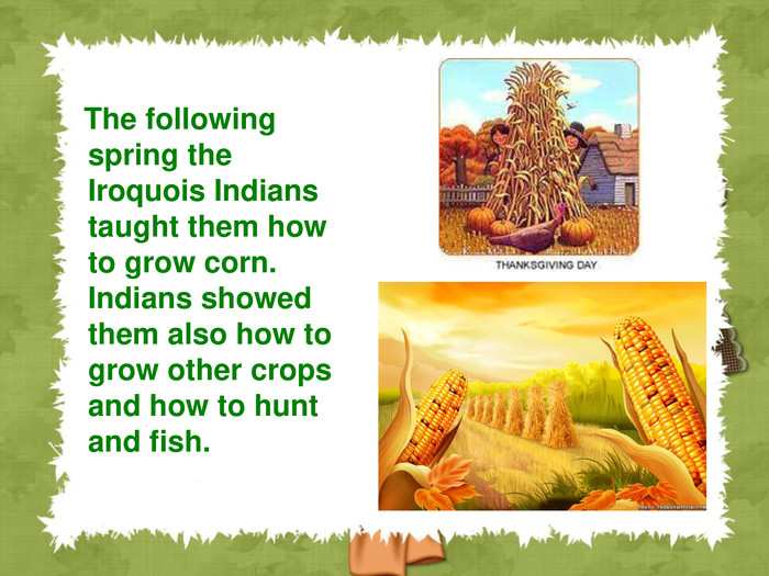 The following spring the Iroquois Indians taught them how to grow corn. Indians showed them also how to grow other crops and how to hunt and fish.