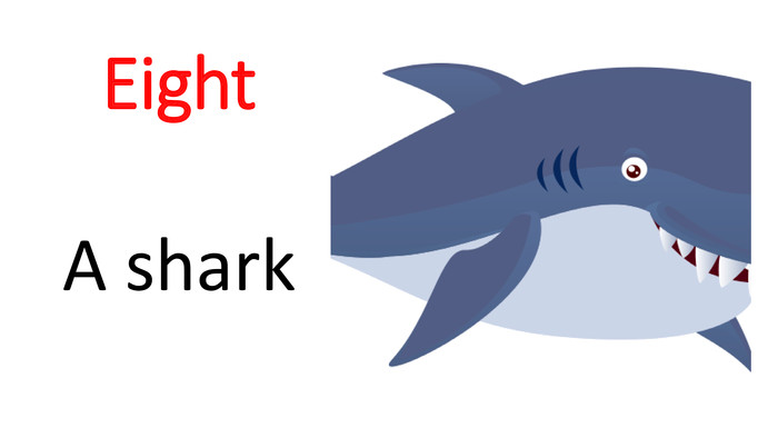 Eight A shark