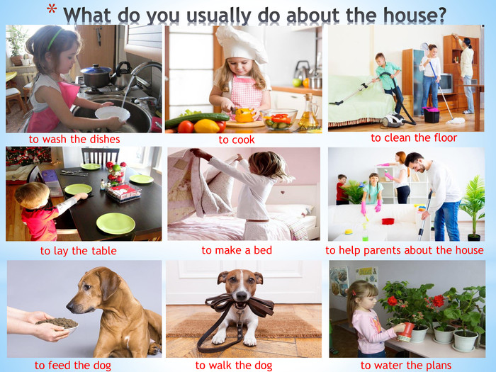 What do you usually do about the house?to wash the dishesto cookto clean the floorto feed the dogto walk the dogto lay the tableto make a bedto help parents about the houseto water the plans